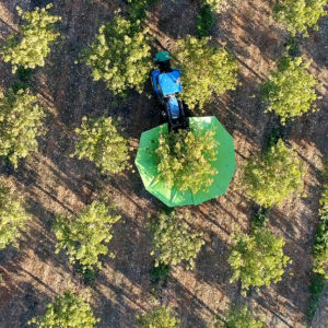 End of harvesting